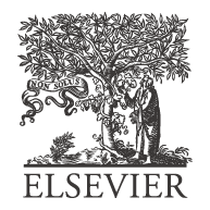 Elsevier-Logo-Web